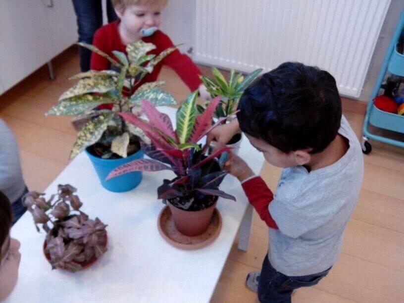 Material Montessori en actividad de vida practica