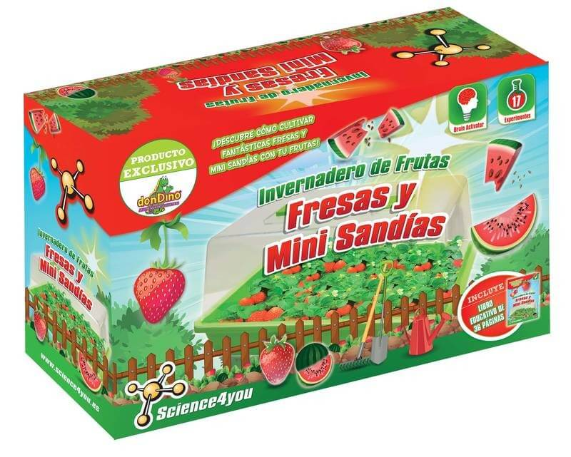 invernadero fresas